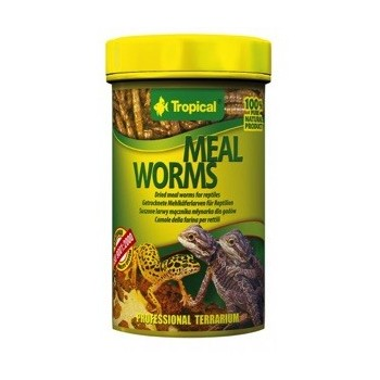 Meal Worms 250ml/30g
